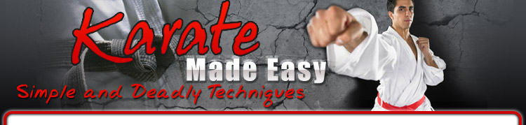Karate Made Easy